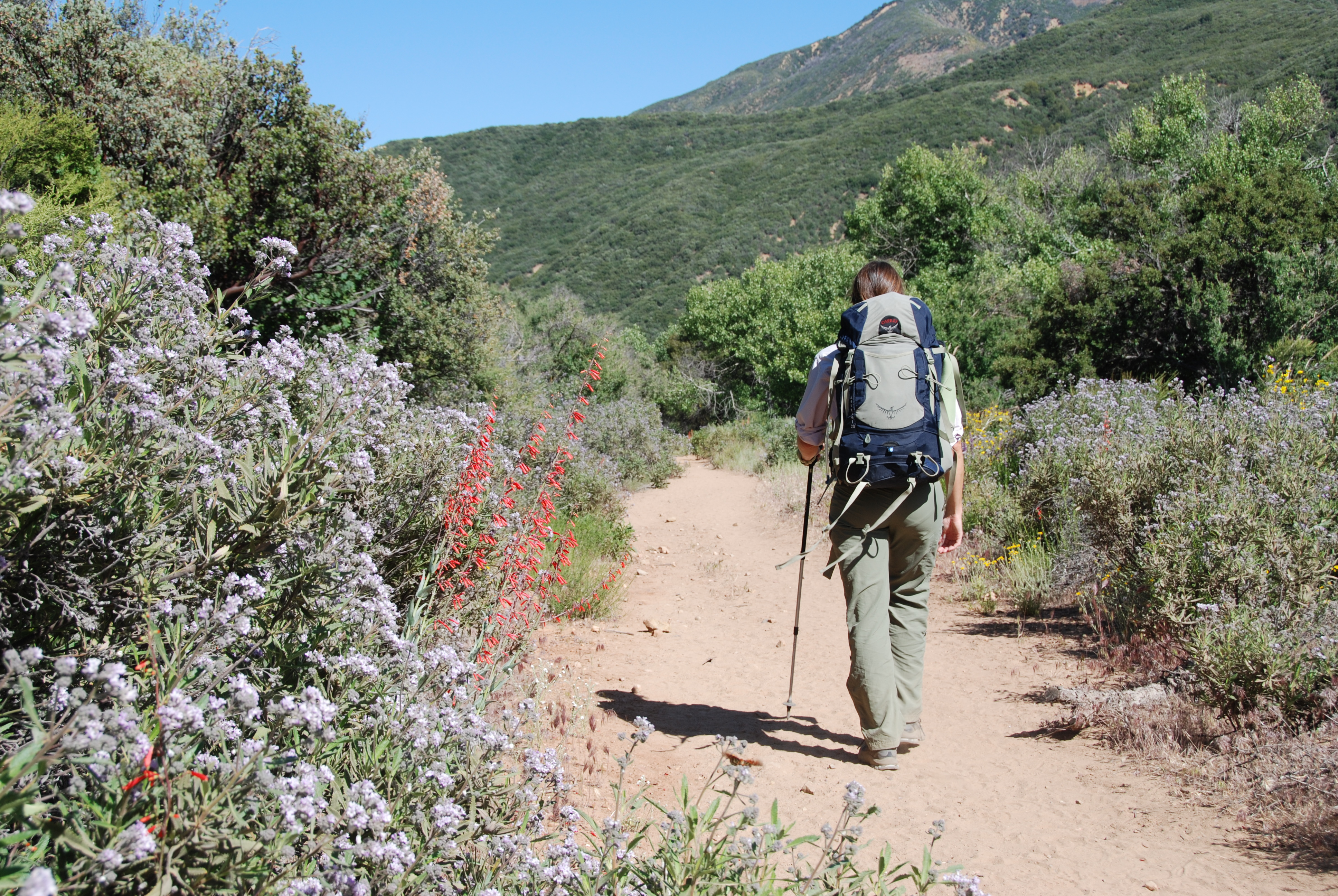 how to become a better hiker